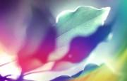 抽象背景 彩虹之色 阳光下的叶子 视觉色彩背景 抽象背景 彩虹之色 插画壁纸