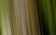 色彩CG 抽象视觉壁纸 抽象炫彩CG设计壁纸第十辑 插画壁纸