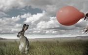 兔子 创意动物PS壁纸 创意无限趣味动物篇 插画壁纸