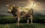 迷彩奶牛 创意动物PS壁纸 创意无限趣味动物篇 插画壁纸