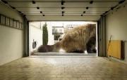 巨型宠物 动物主题创意设计 创意无限趣味动物篇 插画壁纸