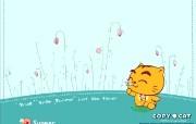 烤猫四季系列 夏 夏的热情 花的璀璨 桌面壁纸 Copy Cat 烤猫卡通壁纸 插画壁纸