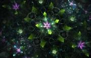 纯数学产物 分形艺术花卉 几何图形的艺术 分形艺术创作壁纸三 插画壁纸