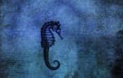 高清晰Vladstudio 壁纸 三 创意可爱插画篇 蓝色海马 Vladstudio 创意插画壁纸 高清晰Vladstudio 壁纸三创意插画篇 插画壁纸