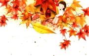 韩国插画名家 Webjong 甜美女孩插画 三 秋季的颜色 Webjong可爱小女孩插画 韩国插画名家Webjong 甜美女孩插画三 插画壁纸