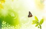 梦幻春天与蝴蝶 韩国精品CG设计壁纸 韩国唯美精品CG设计集 插画壁纸
