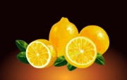 静物柠檬 韩国精品CG壁纸 韩国唯美精品CG设计集 插画壁纸