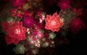分形艺术花卉 视觉艺术图案 华丽分形艺术炫彩花卉 插画壁纸