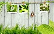 精彩创意 春天主题设计壁纸 春天主题 创意设计插画壁纸 1920 1200 精彩创意春天主题设计壁纸 插画壁纸