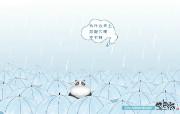 下雨 酷巴熊卡通 酷巴熊卡通壁纸 插画壁纸