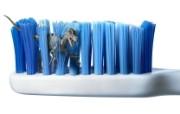 创意无限 Platinum 创意设计壁纸 1680x1050 牙刷丛林 国外创意广告图片 Platinum 创意广告设计一 插画壁纸