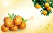 梨 水果PSD设计壁纸 PSD清新蔬果蔬果PS设计壁纸 插画壁纸