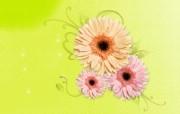 宽屏合成精品花卉 宽屏合成精品花卉 创意壁纸