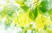 绿色环境主题PS壁纸 绿色环境主题PS壁纸 创意壁纸