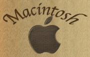 MAC系列壁纸第六辑 创意壁纸