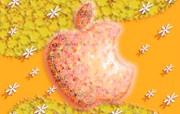 每天一苹果 up sad远离我 创意壁纸