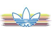 设计精美!adidas三叶草官方壁纸 创意壁纸