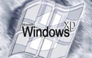 XP壁纸show第八站 创意壁纸