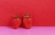 草莓写真 动物壁纸