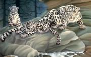 动物写真集油画风格 动物壁纸