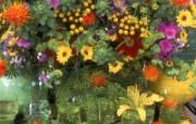 鲜花写真特辑壁纸 壁纸31 鲜花写真特辑壁纸 动物壁纸