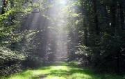 1280x1024自然风景壁纸 1280x1024自然风景壁纸 风景壁纸