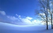 白色世界 风景壁纸