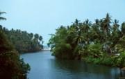 巴厘岛 热带风情的天堂小岛壁纸 海边棕榈树桌面壁纸 巴厘岛热带风情壁纸 风景壁纸