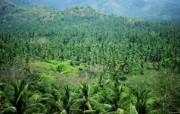 巴厘岛 热带风情风光风景摄影宽屏壁纸 壁纸36 巴厘岛:热带风情风光 风景壁纸