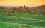 巴厘岛 热带风情风光风景摄影宽屏壁纸 壁纸37 巴厘岛:热带风情风光 风景壁纸