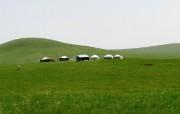北国碧玉呼伦贝尔大草 风景壁纸