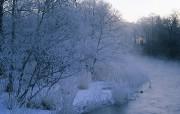 冰天雪地冬天雪景壁纸一 风景壁纸