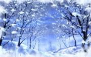 冰天雪地 风景壁纸