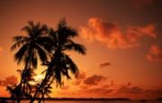 大溪地 梦幻浪漫的热带伊甸园壁纸 壁纸29 大溪地:梦幻浪漫的热 风景壁纸