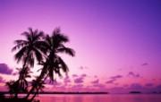 大溪地 梦幻浪漫的热带伊甸园壁纸 壁纸30 大溪地:梦幻浪漫的热 风景壁纸