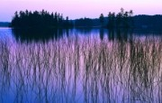 大自然纯朴之美 日落下柔和湖泊壁纸图片壁纸 大自然纯朴之美 风景壁纸