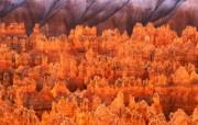 大自然纯朴之美 美国黄石公园壁纸图片壁纸 大自然纯朴之美 风景壁纸