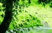 韩国版圣经壁纸 自然 风景壁纸