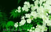 韩国美丽风光 风景壁纸