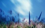 韩国摄影壁纸系列原野山色 风景壁纸