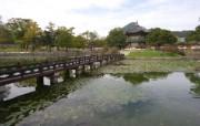 韩国特色风光风景摄影宽屏壁纸 壁纸31 韩国特色风光风景摄影 风景壁纸
