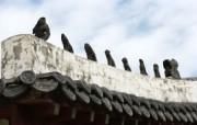 韩国特色风光风景摄影宽屏壁纸 壁纸79 韩国特色风光风景摄影 风景壁纸