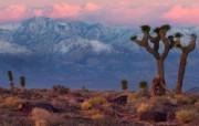 加利福尼亚 黄金之州 金州 风光风景宽屏壁纸 壁纸5 加利福尼亚(黄金之州 风景壁纸