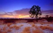 加利福尼亚 黄金之州 金州 风光风景宽屏壁纸 壁纸14 加利福尼亚(黄金之州 风景壁纸