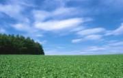 郊野风景与田园风光 风景壁纸