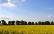 捷克之春 Czech Spring 宽屏风光壁纸 壁纸3 捷克之春 Czech 风景壁纸