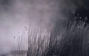 宽屏风景云雾壁纸 风景壁纸
