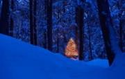 宽屏雪景壁纸 风景壁纸