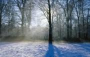 宽屏雪景风光壁纸 风景壁纸