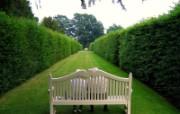 绿化百分百 精美花园 风景壁纸